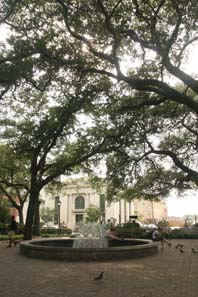 Vacation in the South prompts mind over matter