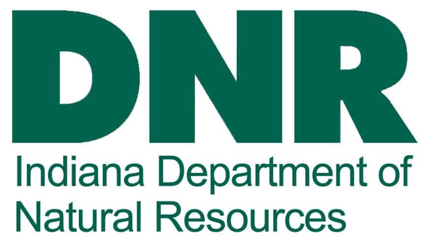 Welcome 2021 with DNR tradition: a First Day Hike