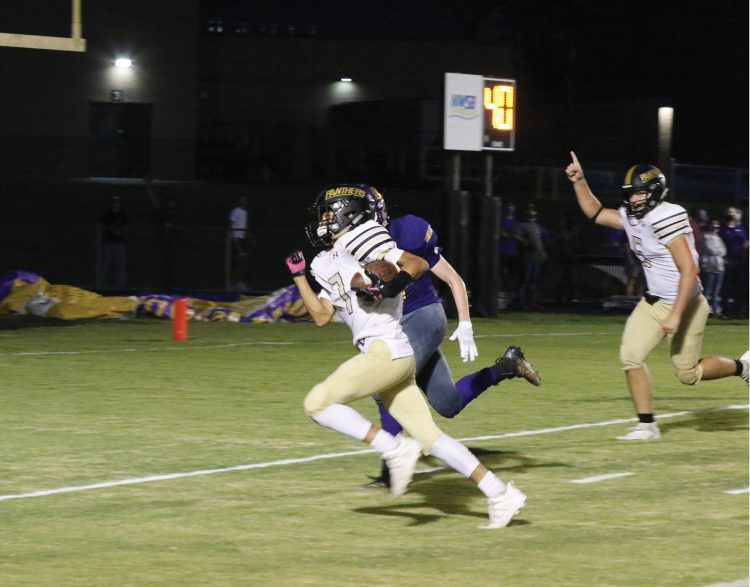 Panthers bounce back with big W