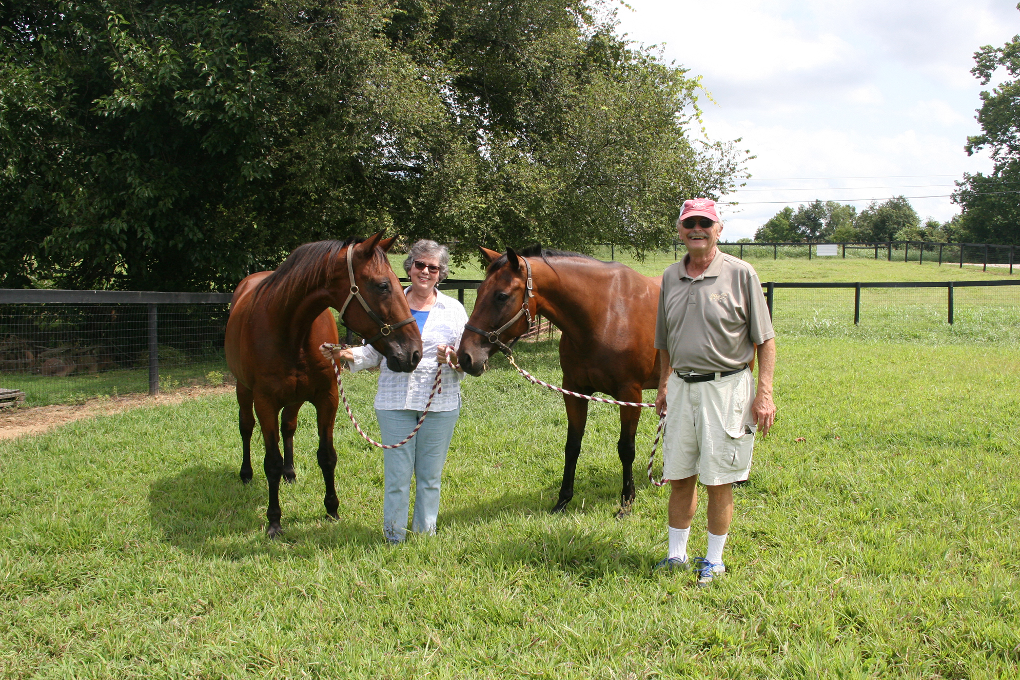 Former cattle rancher turns to harness racing