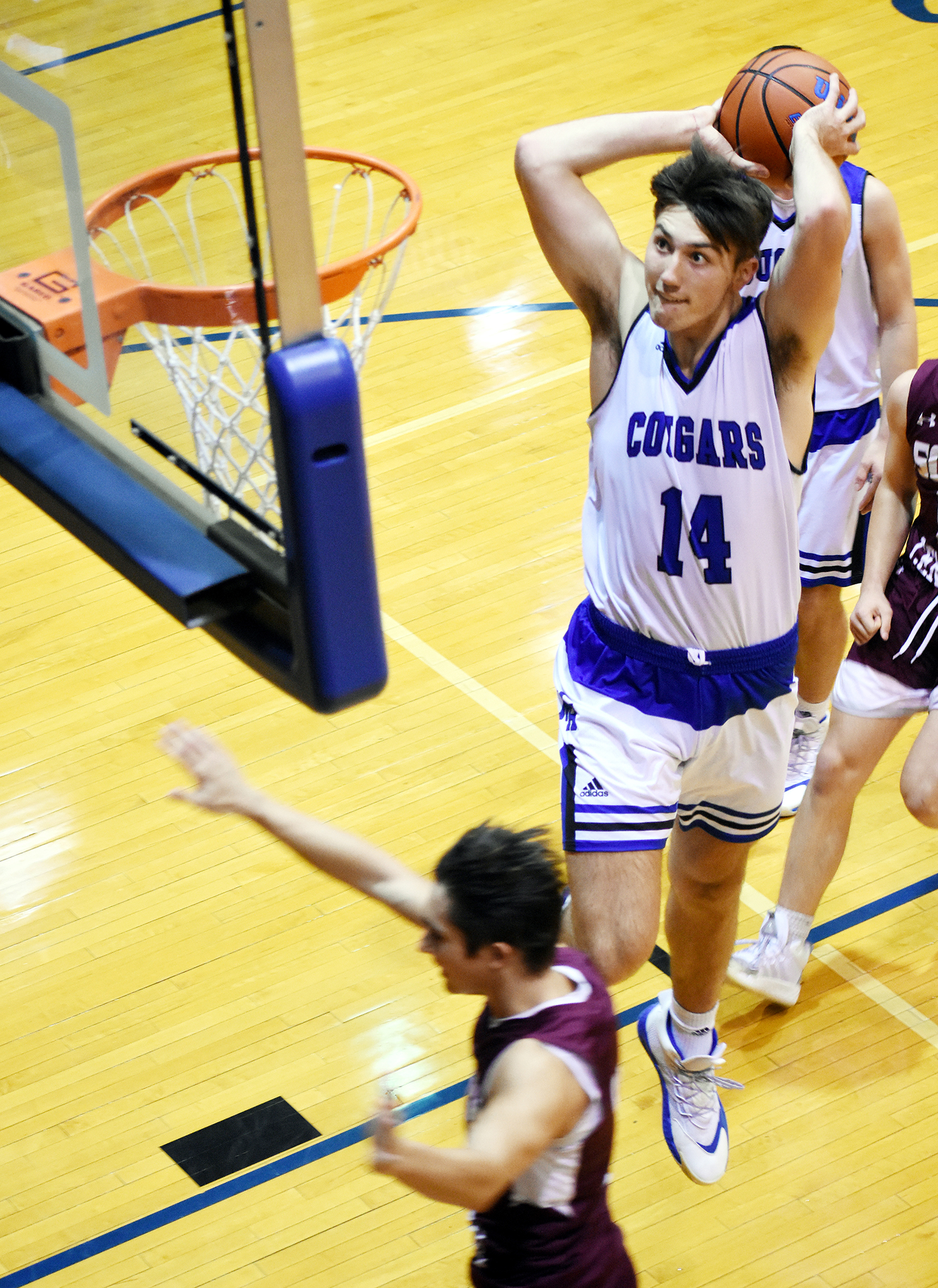 Cougars pounce on Rebels, 71-38