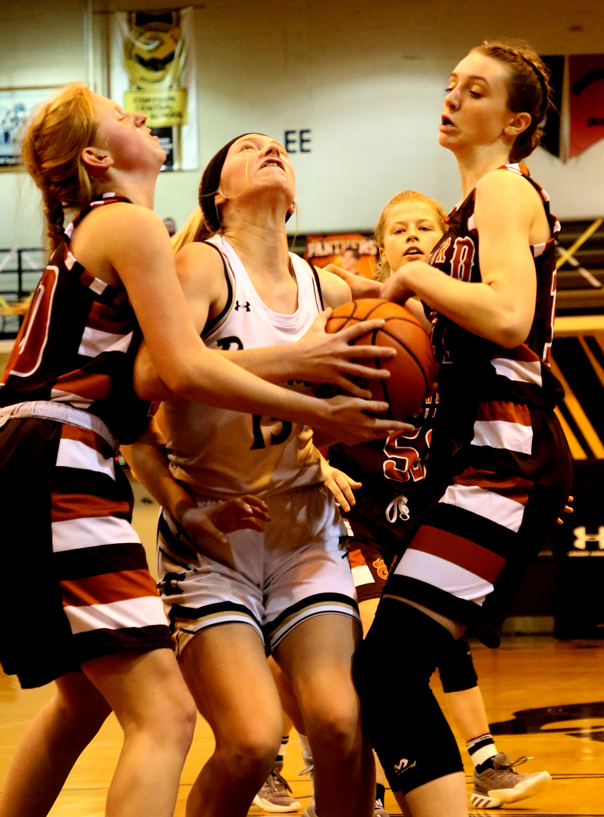 Lady Panthers handle Crawford
