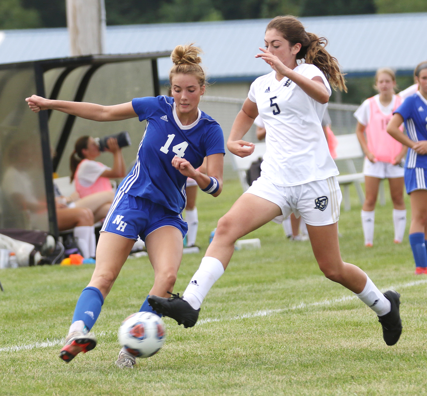 Providence stings Lady Cats