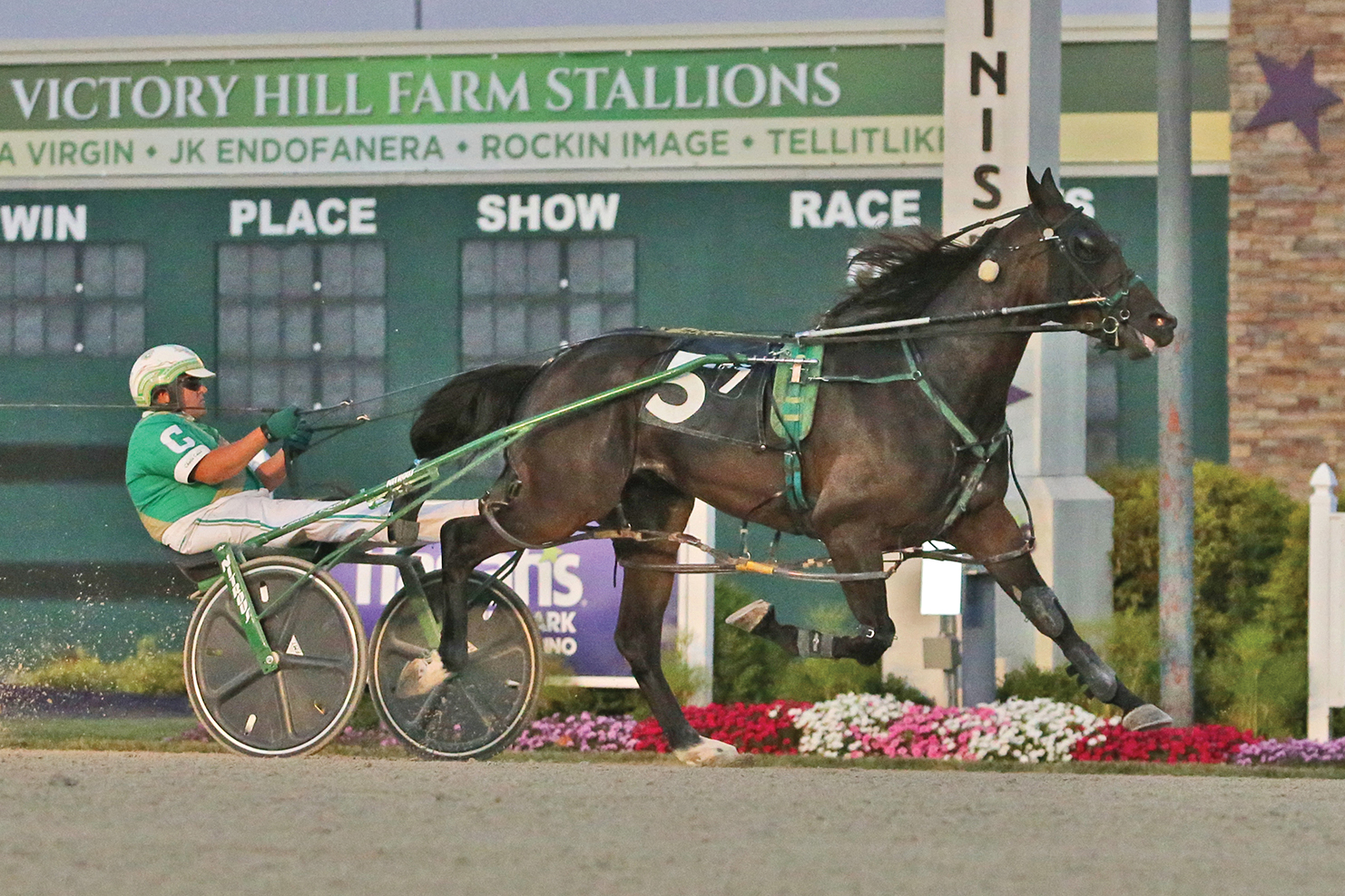 Local pacers win at Hoosier Park